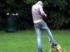 Calcio a un cane