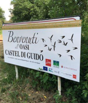 L'oasi Castel di Guido