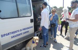 Anagrafe canina itinerante a Napoli