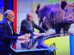Cinghiali a Roma: Roberto Gualtieri e Enrico Michetti su Sky TG24